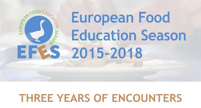 The EFES project approach