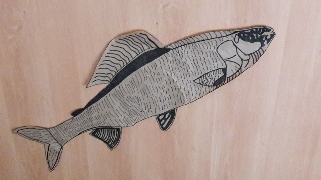 The Loire fish